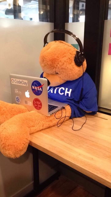 hatch-bear